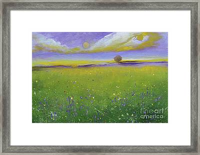 Sunset Over The Garden Framed Print
