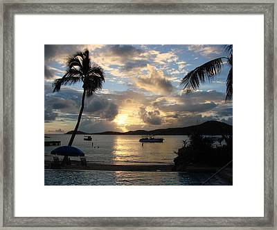 Sunset Over The Inifinity Pool At Frenchman's Cove In St. Thomas Framed Print by Margaret Bobb