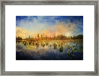 Sunset Over The Okefenokee Framed Print