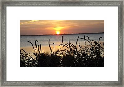 Sunset Over The Sound  Framed Print by Joyce Wasser