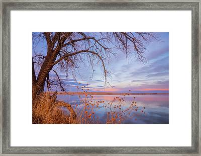 Framed Print featuring the photograph Sunset Overhang by Darren White