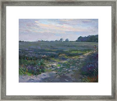 Sunset Over The Field Framed Print by Ylli Haruni