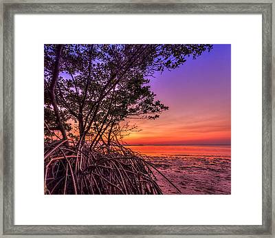 Sunset Palette Framed Print