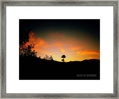 Sunset - Palm Mountain Framed Print