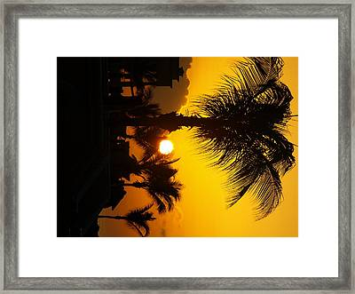 Sunset Palm Framed Print by Randall Slinkard