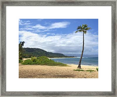 Sunset Point Palm Tree Framed Print by Paul Topp