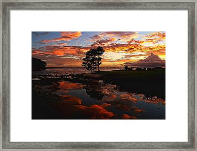 Sunset Reflection Painted Framed Print by Judy Vincent