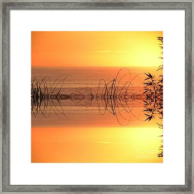 Sunset Reflection Framed Print by Sheila Ping