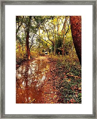 Sunset Reflections On The Old Jeep Trail Framed Print by Scott D Van Osdol