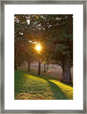Sunset Retreat Framed Print by Michele Myers