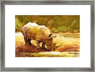 Sunset Rhino Framed Print by Brian Kesinger