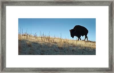 Sunset Ridge Framed Print by John Blumenkamp