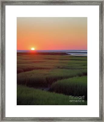 Sunset Romance Framed Print