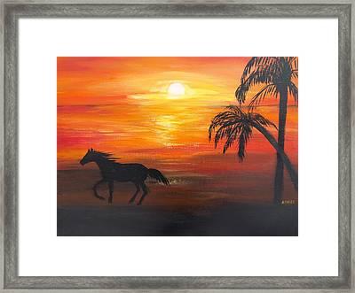 Sunset Run Framed Print by Aleta Parks