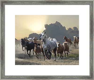 Sunset Run Framed Print