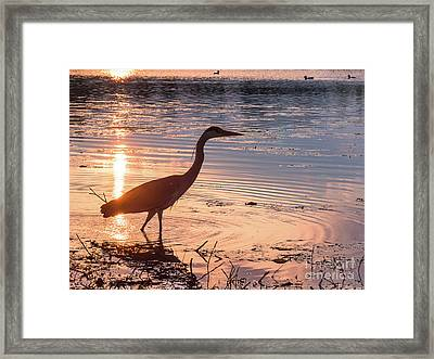 Framed Print featuring the photograph Sunset Sentinel by Paul Farnfield