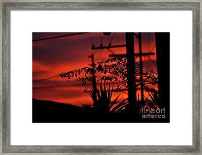 Sunset Sihouettes Framed Print