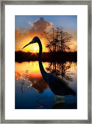 Sunset Silhouette Framed Print by Debra and Dave Vanderlaan