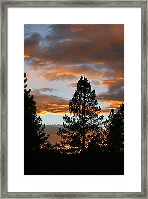 Sunset Silhouette Framed Print by Donald Tusa