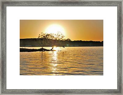 Framed Print featuring the photograph Sunset Silhouette by Teresa Blanton