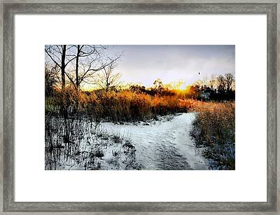 Sunset Snow Steps Framed Print by Diana Angstadt