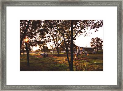 Sunset Stallion Games  Framed Print