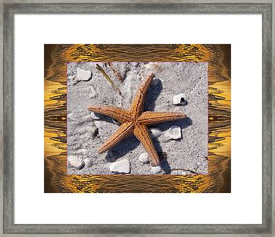 Framed Print featuring the photograph Sunset Starfish by Bell And Todd