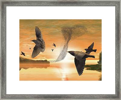 Murmuration Framed Print