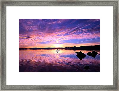 Sunset Supper Framed Print by Sean Sarsfield