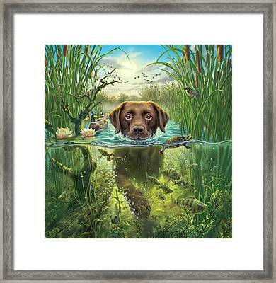 Sunset Swim With Friends Framed Print by Mark Fredrickson