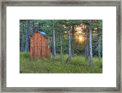 Sunset Through Spruce Framed Print