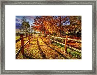 Sunset Trail Framed Print by Debra and Dave Vanderlaan