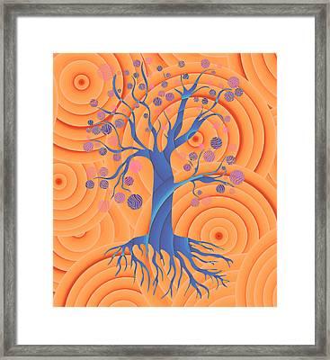 Sunset Tree Framed Print by Frank Tschakert