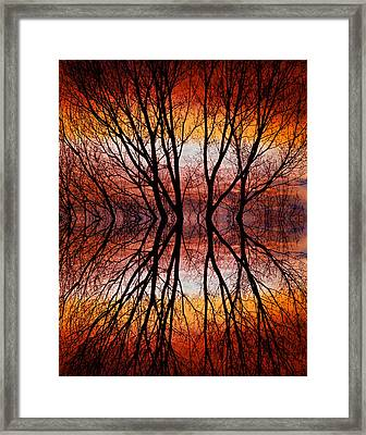 Sunset Tree Silhouette Abstract 2 Framed Print by James BO  Insogna