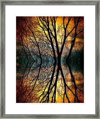 Sunset Tree Silhouette Abstract 3 Framed Print by James BO  Insogna