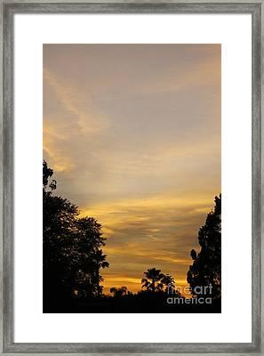 Sunset Framed Print by Viktor Savchenko