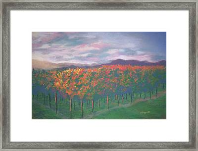 Sunset Vineyard Framed Print