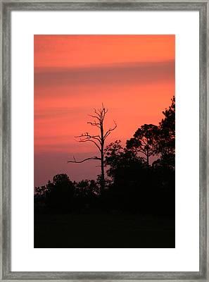 Sunset Framed Print by Walt Reece