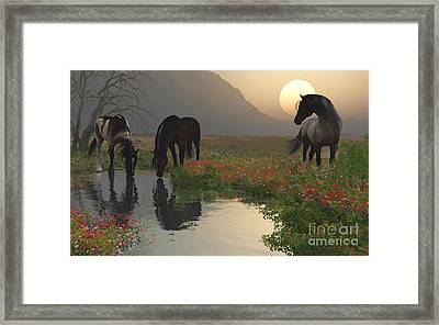 Sunset With Horses By The Stream Framed Print
