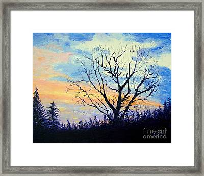 Sunset With The Geese Framed Print