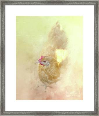 Sunshine And Shadows Framed Print by Anita Faye
