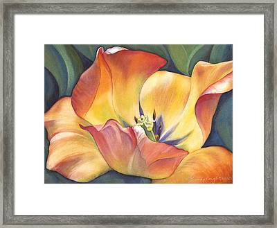 Sunshine Dance Framed Print