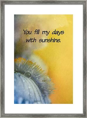 Sunshine Framed Print by Elena E Giorgi