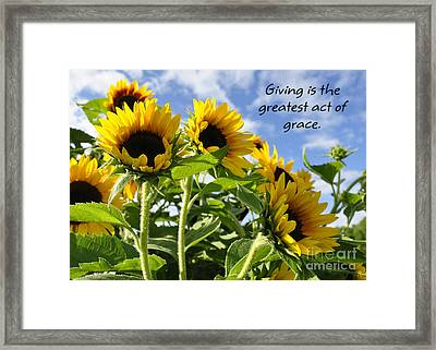 Framed Print featuring the photograph Sunshine Lollipops Grace by Diane E Berry