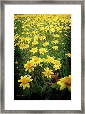 Sunshine Makes Me Happy Framed Print