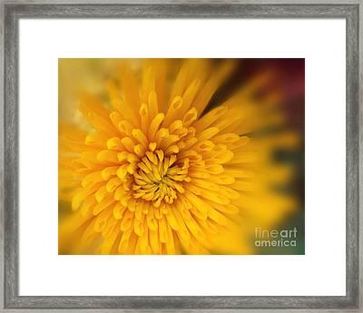 Sunshine Mum Framed Print