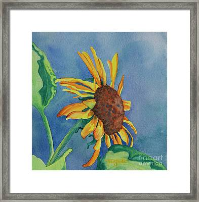 Sunshine On My Shoulders Framed Print by Tracy L Teeter