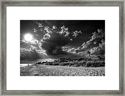 Sunshine On Sanibel Island In Black And White Framed Print