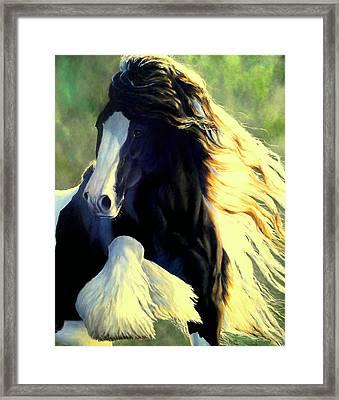 Sunstruck Vanner Framed Print by Ruanna Sion Shadd a'Dann'l Yoder