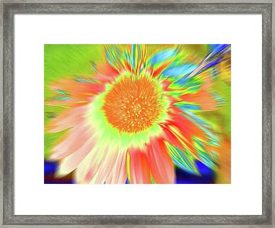 Sunswoop Framed Print